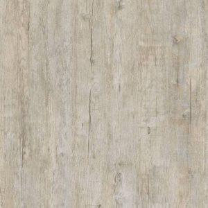 Saltcliff Oak